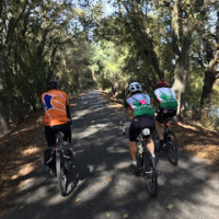 lodi 55 mile bike route